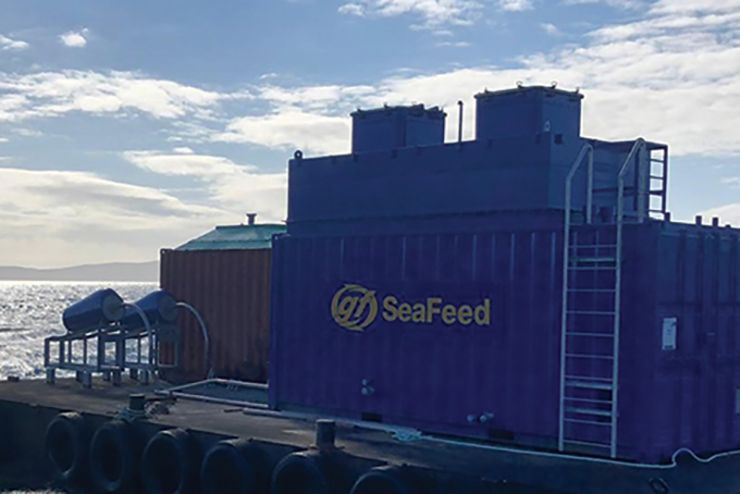 Multi-level blue SeaFeed container with two SeaFeed selectors attached on site